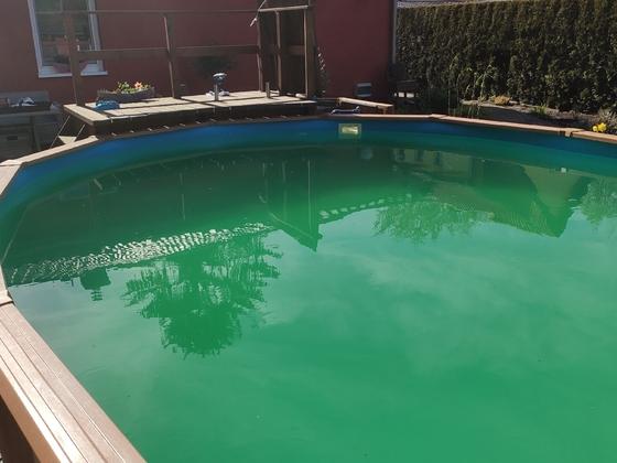 grün-braune Brühe, vor allem vom Brunnenwasser
